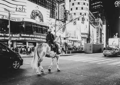 New York City, Horse, Police